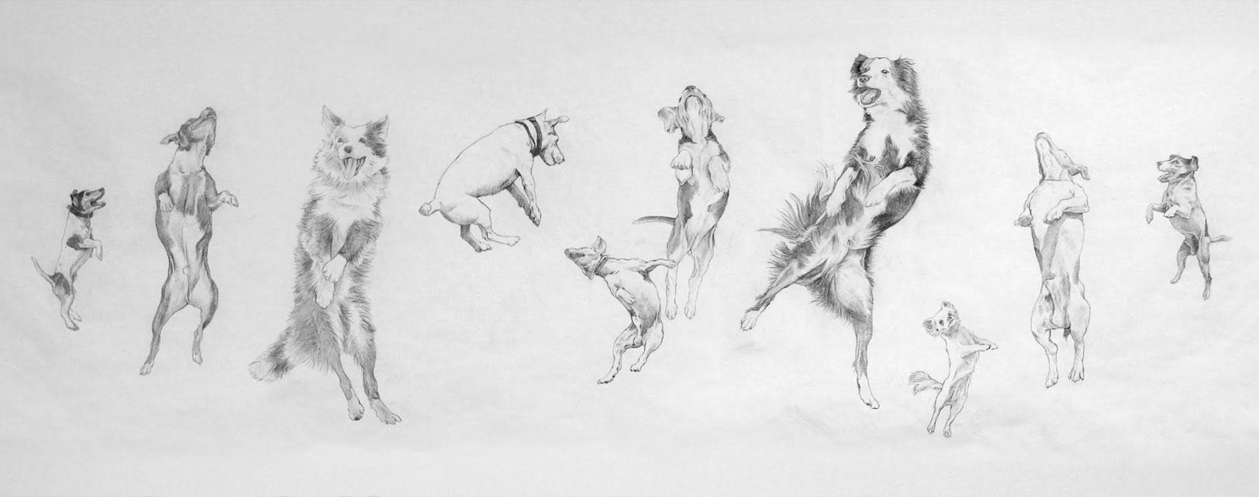 eugenio-rivas-jumping-dogs